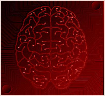 Programming the Brain