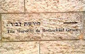 Israel : Dorothy de Rothschild Grove