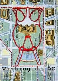 Owls : Washington DC Map Owl Outline